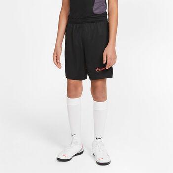 Nike Dri-FIT Academy 21 Pant Chlapecké šedá