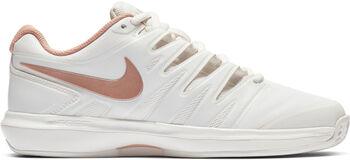 Nike Wmns Air Zoom Prestige Clay Dámské šedá