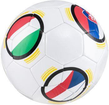 PRO TOUCH Fotbalový míč multicolor