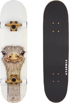 FIREFLY  SKB 505 SkateboardDeska: 81x21cm bílá