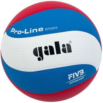 Gala  Pro Line BV5591Svolejbal. míc bílá
