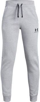 Under Armour EU Cotton Fleece Chlapecké šedá