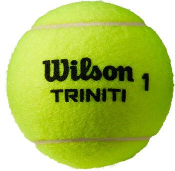 Wilson  Tenisové míčeTriniti 4ks žlutá