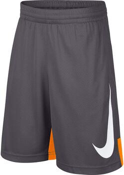 Nike B Nk Dry Short Hbr Chlapecké šedá