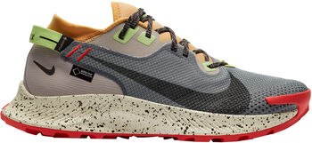 Nike Pegasus Trail 2 GTX běžecké boty Pánské černá