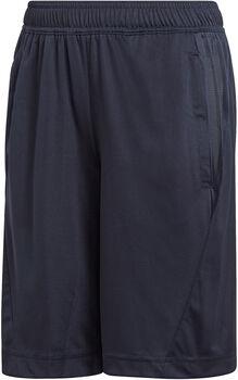 adidas Equip Knit Short Chlapecké modrá
