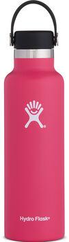 Hydro Flask Standard Mout růžová