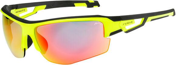 PalmeiraSluneční brýle
